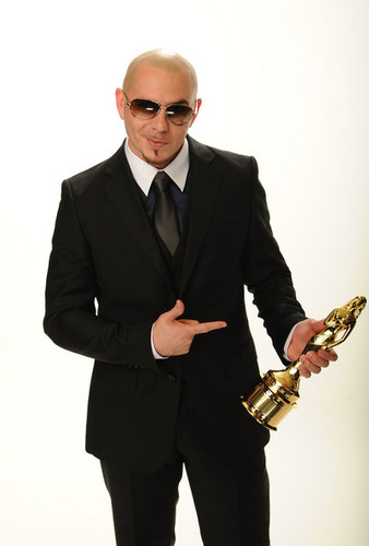 pitbull-pitbull-rapper-31223233-338-500